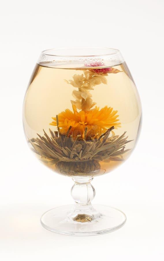 Vetro con un tè verde del fiore fotografie stock
