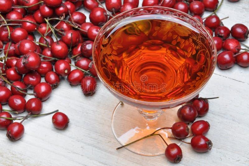 Vetro del liquore del cratego e della frutta del cratego fotografia stock