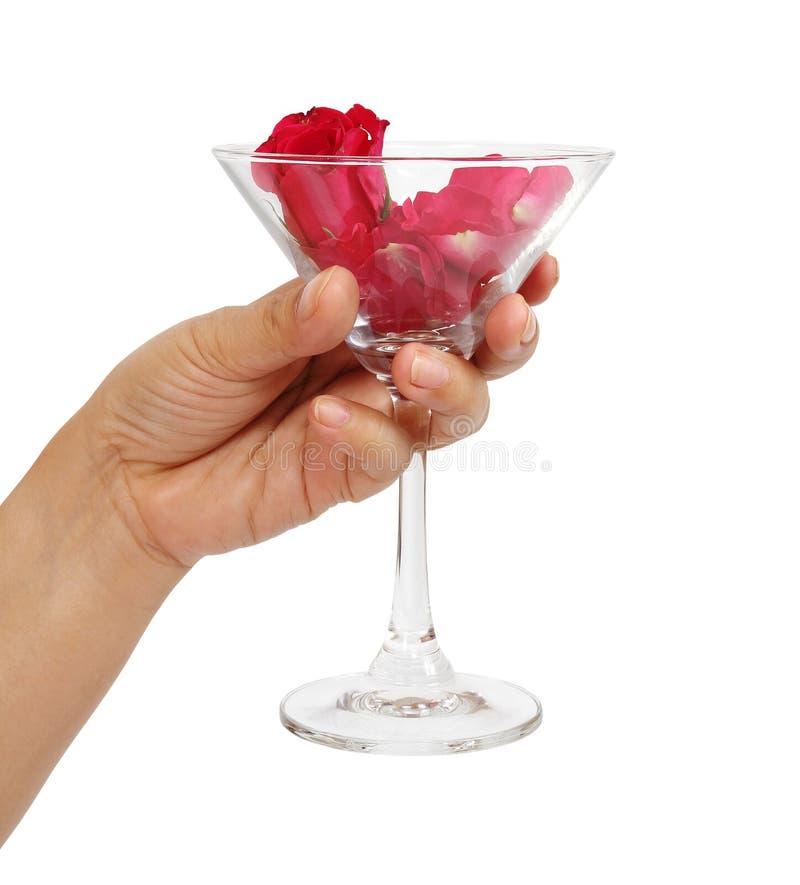 Vetro del martini della holding della mano immagini stock