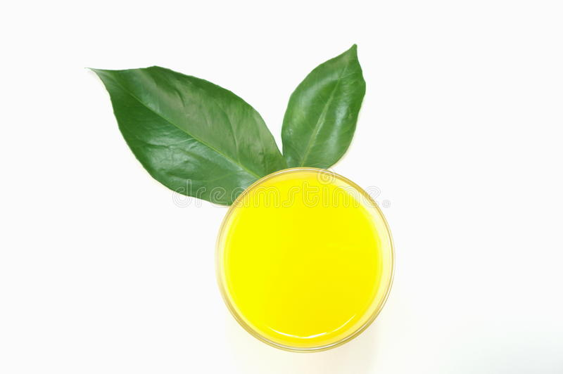 Vetro del succo di arancia immagini stock