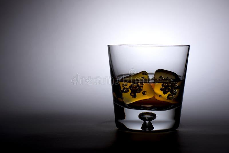 Vetro del whiskey fotografia stock