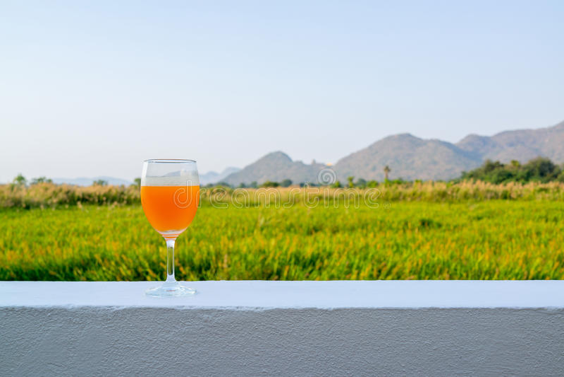 Vetro dell'aranciata con terra posteriore delle montagne e del campo di erba fotografia stock