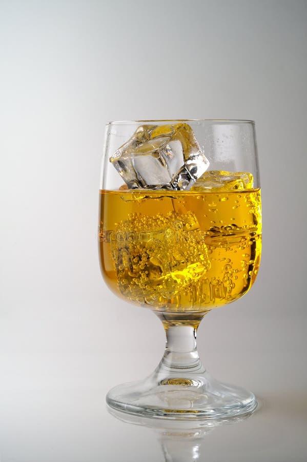 Vetro della bevanda gialla con ghiaccio immagine stock libera da diritti
