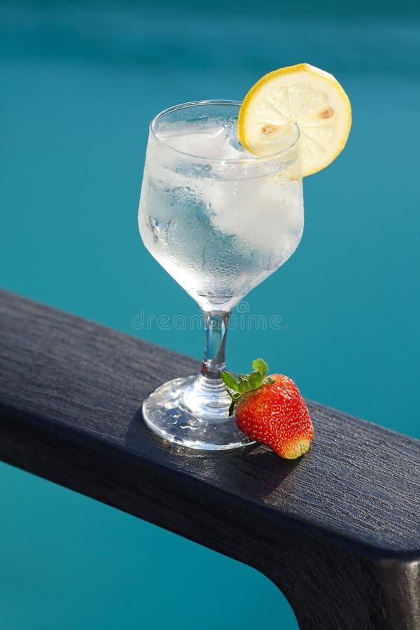 Vetro della piscina, del salotto e di vino con ghiaccio fotografia stock libera da diritti