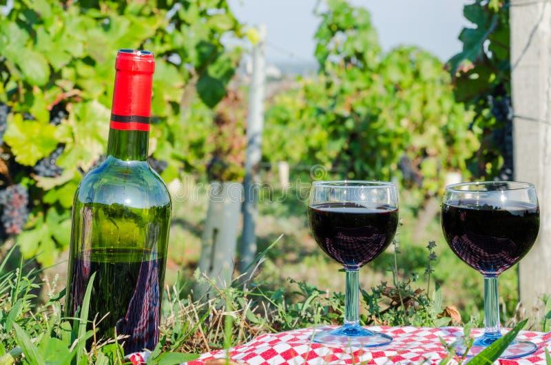 Vetro della vite rossa, Borgogna, Francia immagini stock