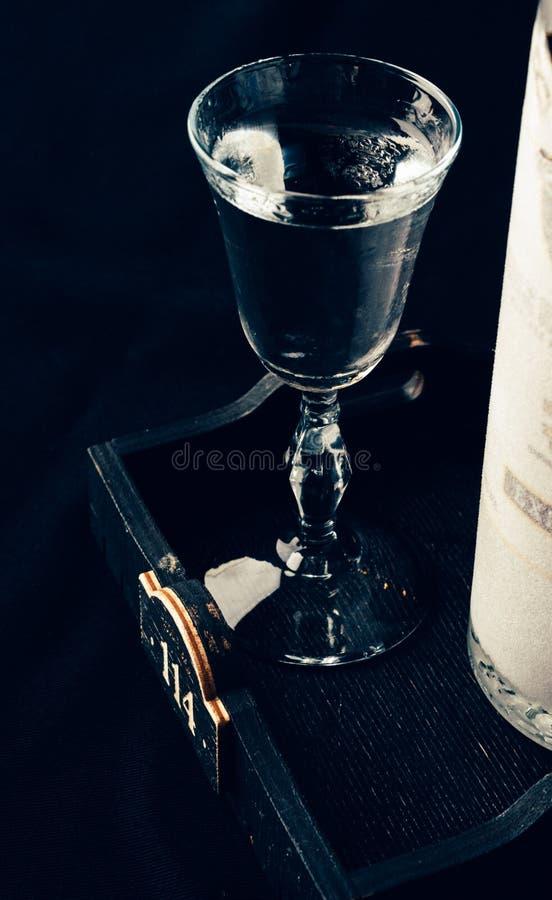 Vetro della vodka e bottiglia glassata immagine stock libera da diritti
