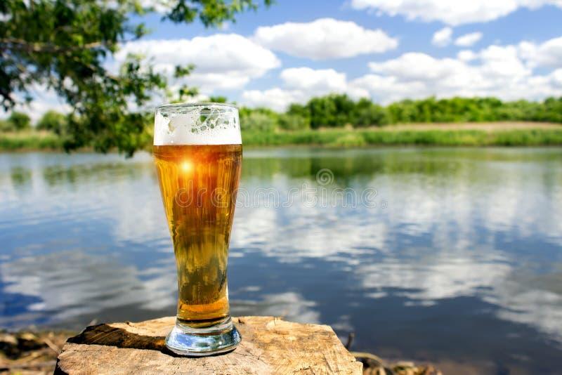 Vetro di birra fredda immagini stock libere da diritti