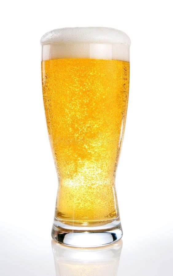 Vetro di birra su un bianco immagine stock libera da diritti