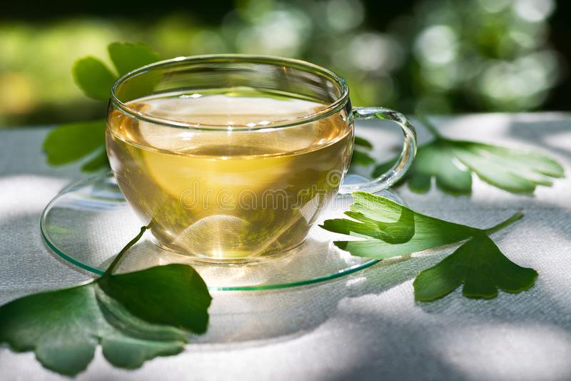 Vetro di tè erbaceo con il ginkgo immagine stock