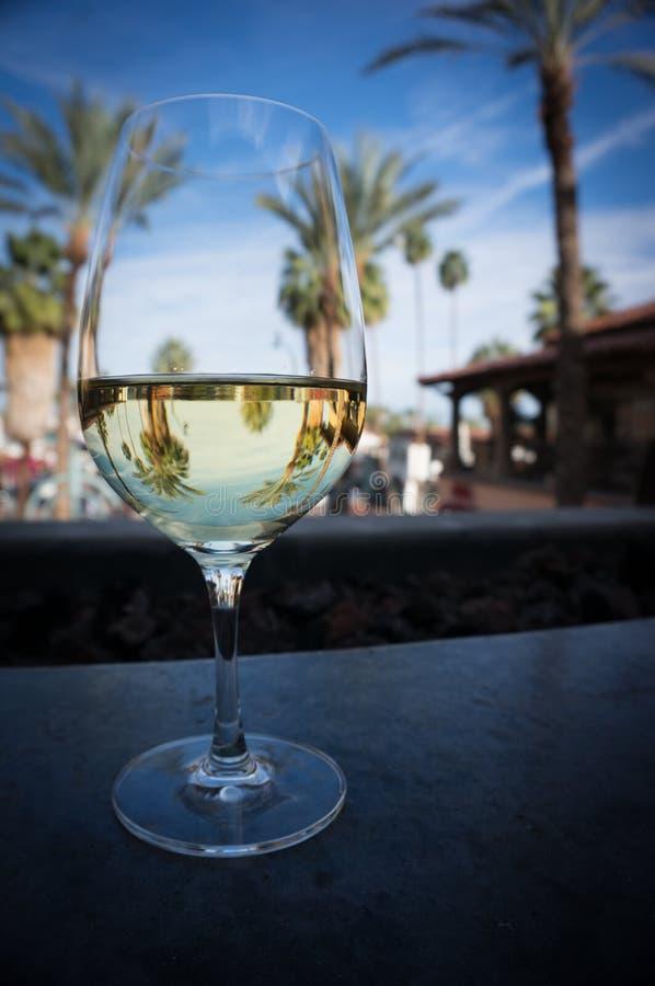 Vetro di vino con le riflessioni della palma immagini stock