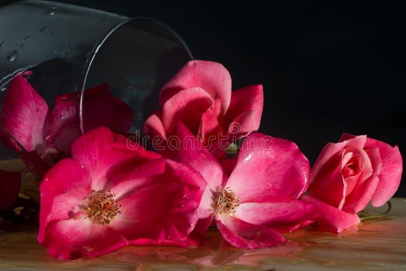 Vetro di vino dal suo lato riempito di mazzo delle rose rosa fotografie stock