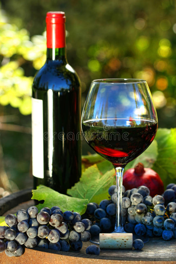 Vetro di vino rosso con la bottiglia e l'uva fotografia stock libera da diritti