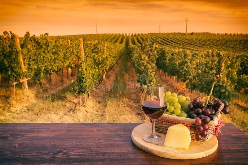Vetro di vino rosso davanti ad una vigna al tramonto fotografie stock