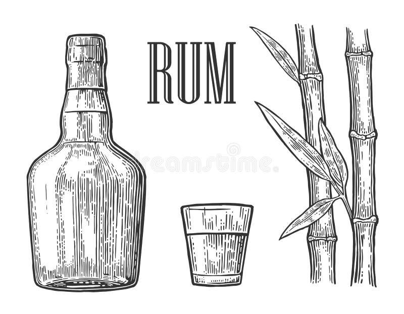 Vetro e bottiglia di rum con la canna da zucchero royalty illustrazione gratis