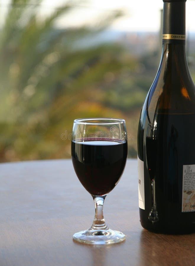 Vetro e bottiglia di vino immagine stock libera da diritti
