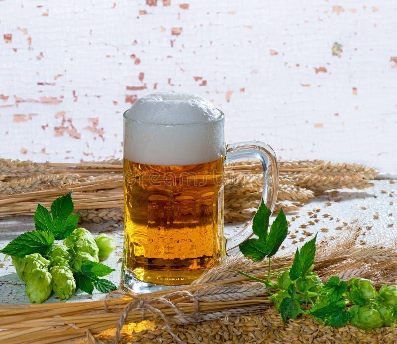 Vetro, luppolo ed orzo di birra fotografia stock