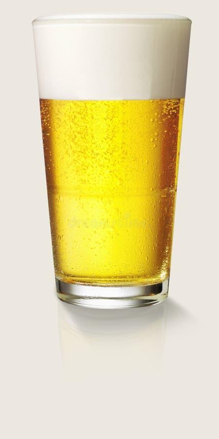 Vetro perfetto di birra immagini stock libere da diritti
