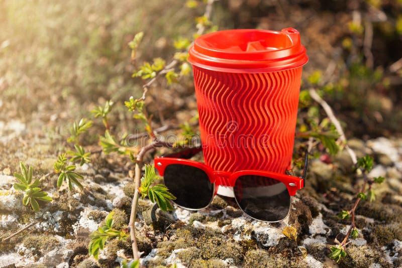 Vetro rosso del cartone per caffè e gli occhiali da sole con l'orlo rosso, all'aperto, contro lo sfondo di pianta fresca, concett fotografie stock libere da diritti