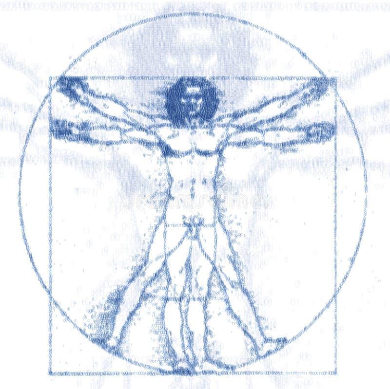 Vetruvian-Mann lizenzfreie abbildung
