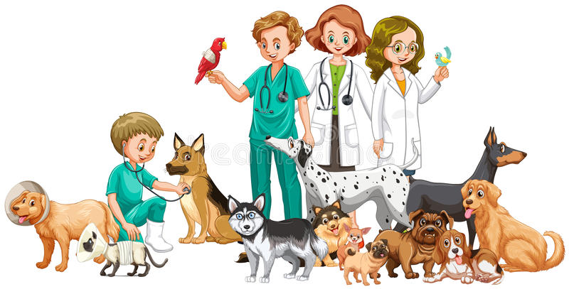 Vets And Many Animals Stock Vector. Illustration Of
