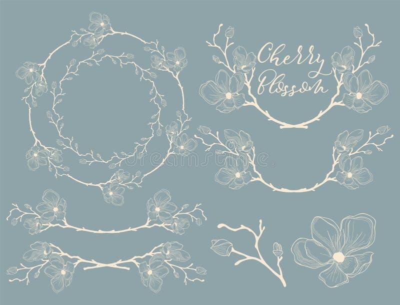 Vettore Cherry Blossom Design Divisori, strutture e corone illustrazione di stock