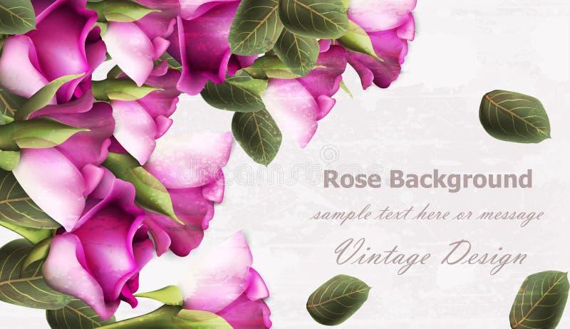 Vettore d'annata del fondo delle rose Illustrazione della disposizione di struttura di lerciume royalty illustrazione gratis