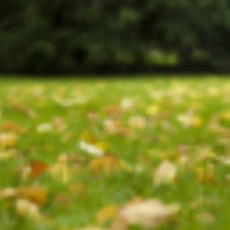 Vettore dal fondo del prato di autunno del fuoco immagine stock