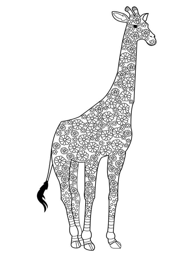 Vettore del libro da colorare della giraffa per gli adulti illustrazione di stock