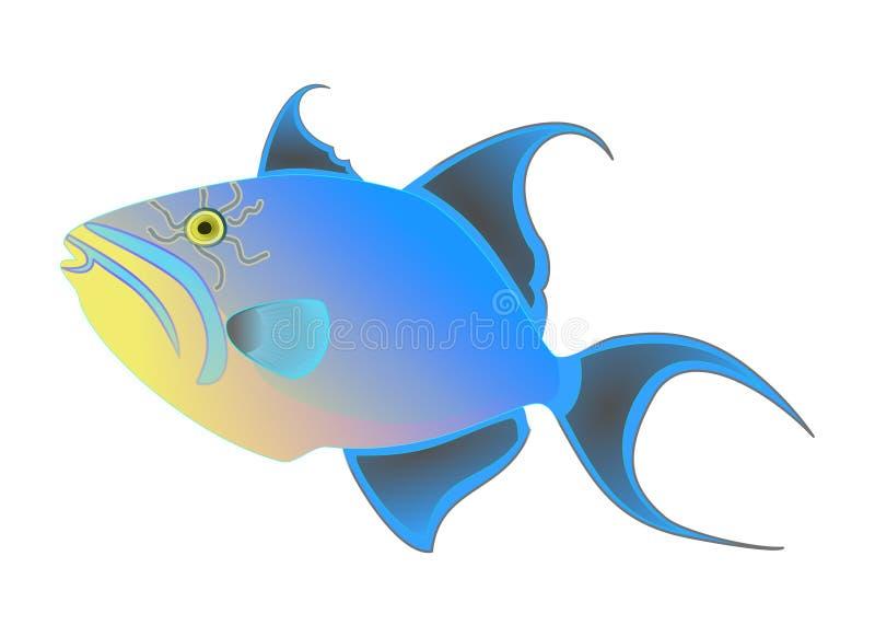 Vettore del pesce balestra nero di regina Pesce tropicale esotico variopinto isolato su fondo bianco Animale dell'oceano, charact royalty illustrazione gratis