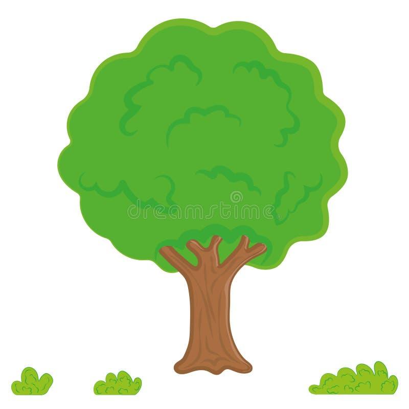 vettore dell'albero, foglie, giardino Albero della foresta o del parco del fumetto, pendenza isolato su fondo bianco illustrazione vettoriale