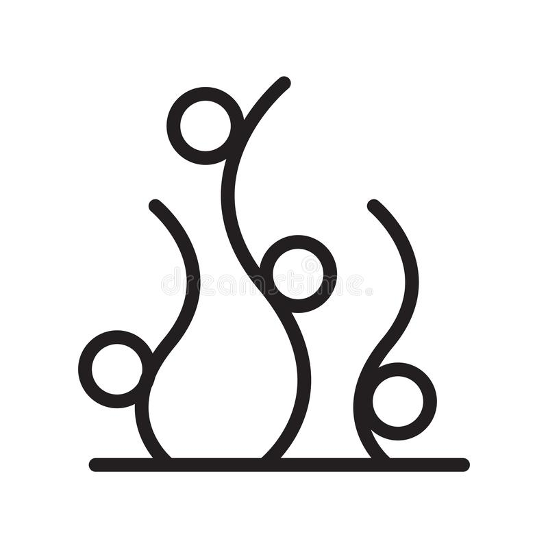 Vettore dell'icona dell'alga isolato su fondo bianco, sul segno dell'alga, sulla linea simbolo o sulla progettazione lineare dell royalty illustrazione gratis