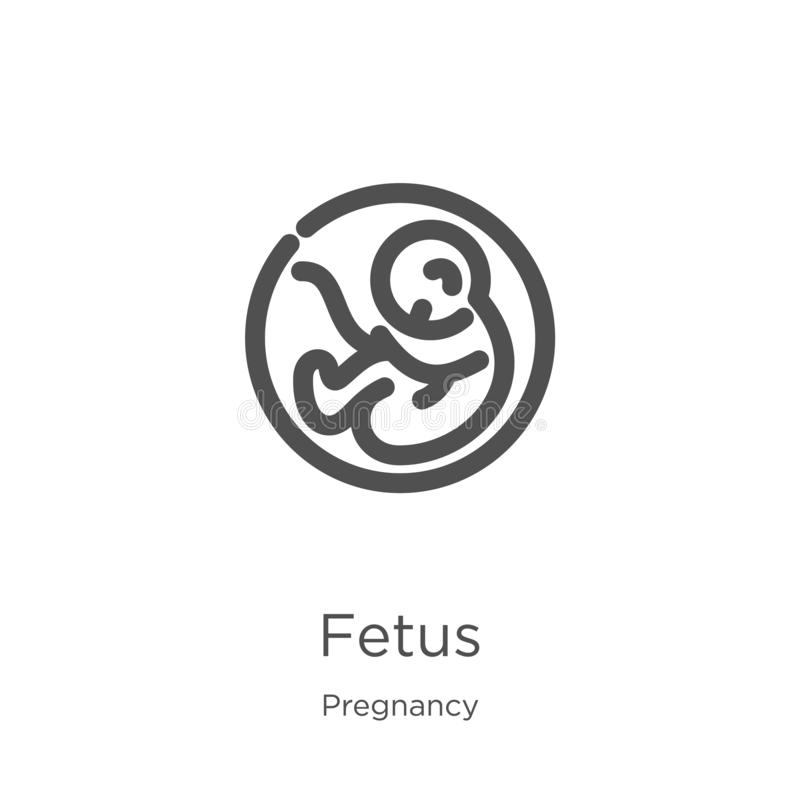 vettore dell'icona del feto dalla raccolta di gravidanza Linea sottile illustrazione di vettore dell'icona del profilo del feto P illustrazione di stock