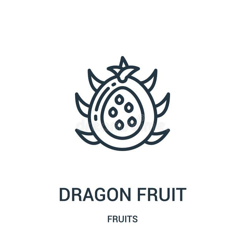 vettore dell'icona della frutta del drago dalla raccolta di frutti Linea sottile illustrazione di vettore dell'icona del profilo  royalty illustrazione gratis
