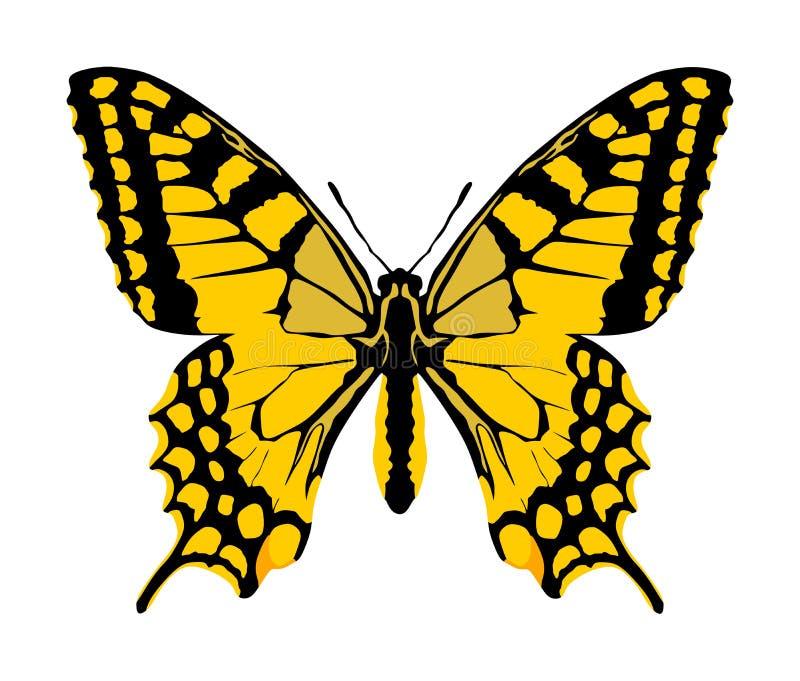 Vettore della farfalla di monarca con le ali aperte royalty illustrazione gratis