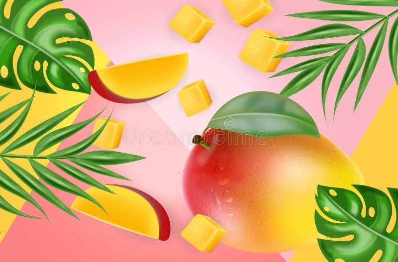 Vettore della frutta del mango realistico Fette deliziose fresche del dessert Fondo tropicale astratto Elementi dettagliati 3d royalty illustrazione gratis