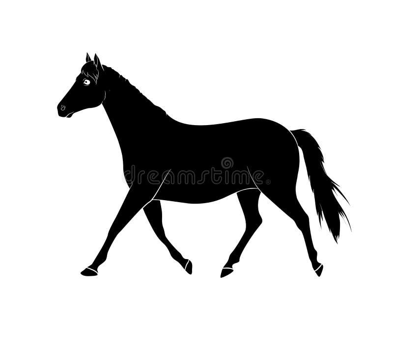 Vettore della siluetta del cavallo illustrazione vettoriale