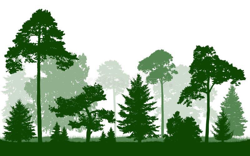 Vettore della siluetta di verde di foresta, isolato su fondo bianco illustrazione vettoriale