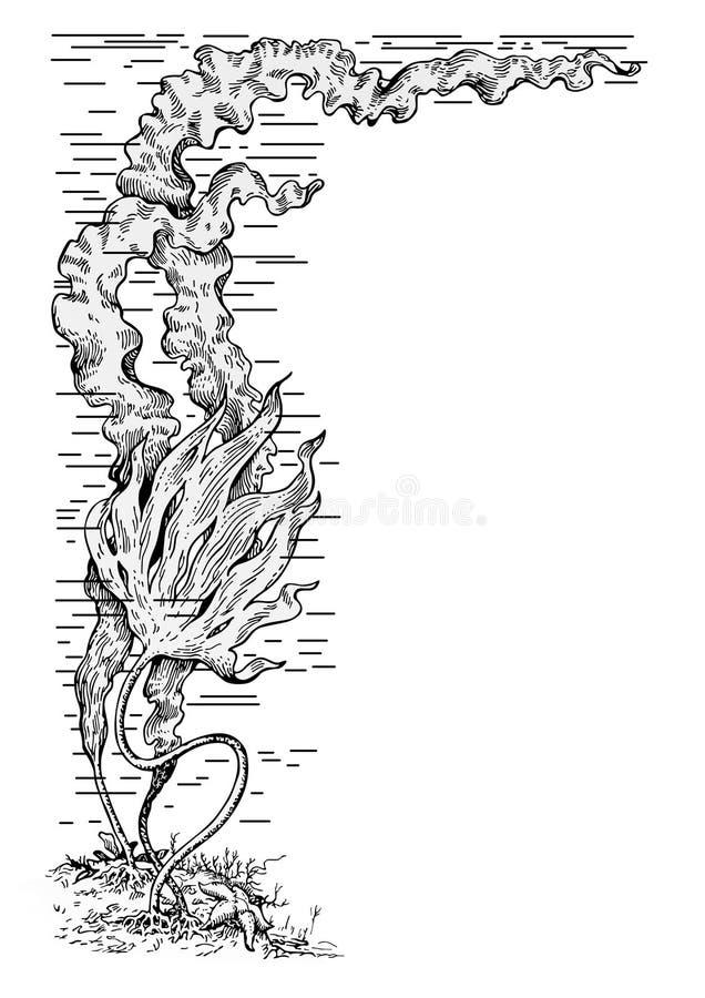Vettore delle alghe royalty illustrazione gratis