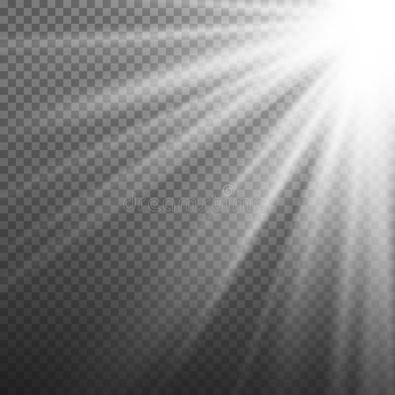 Vettore di effetto della luce Luce di scoppio dei raggi Isolato su fondo trasparente Illustrazione di vettore royalty illustrazione gratis