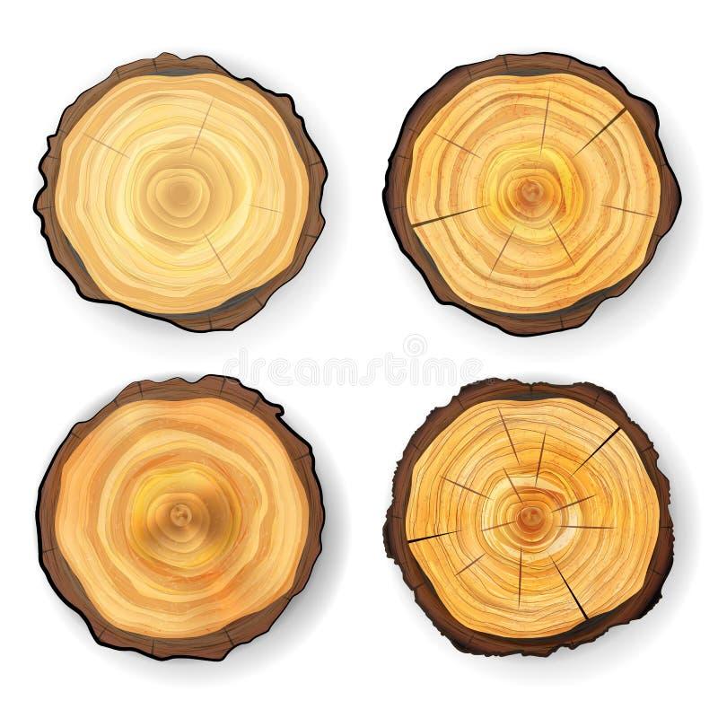 Vettore di legno stabilito del ceppo dell'albero di sezione trasversale I cerchi strutturano isolato Taglio rotondo dell'albero c illustrazione vettoriale