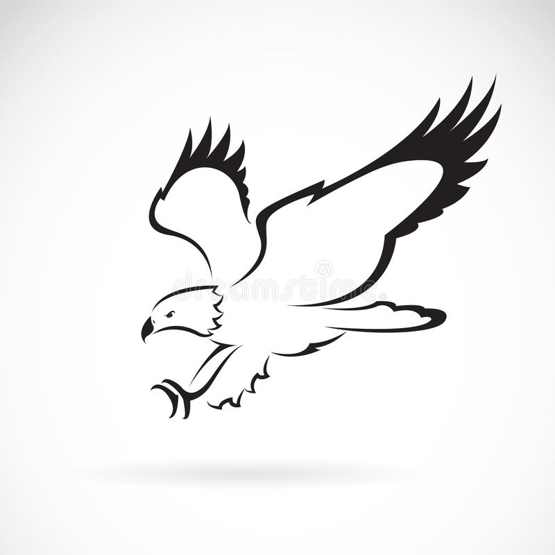 Vettore di progettazione dell'aquila su fondo bianco, animali selvatici illustrazione vettoriale