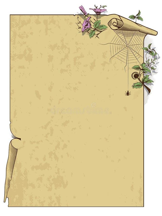 Vettore di riserva Fondo del rotolo con i fiori ed il ragno royalty illustrazione gratis