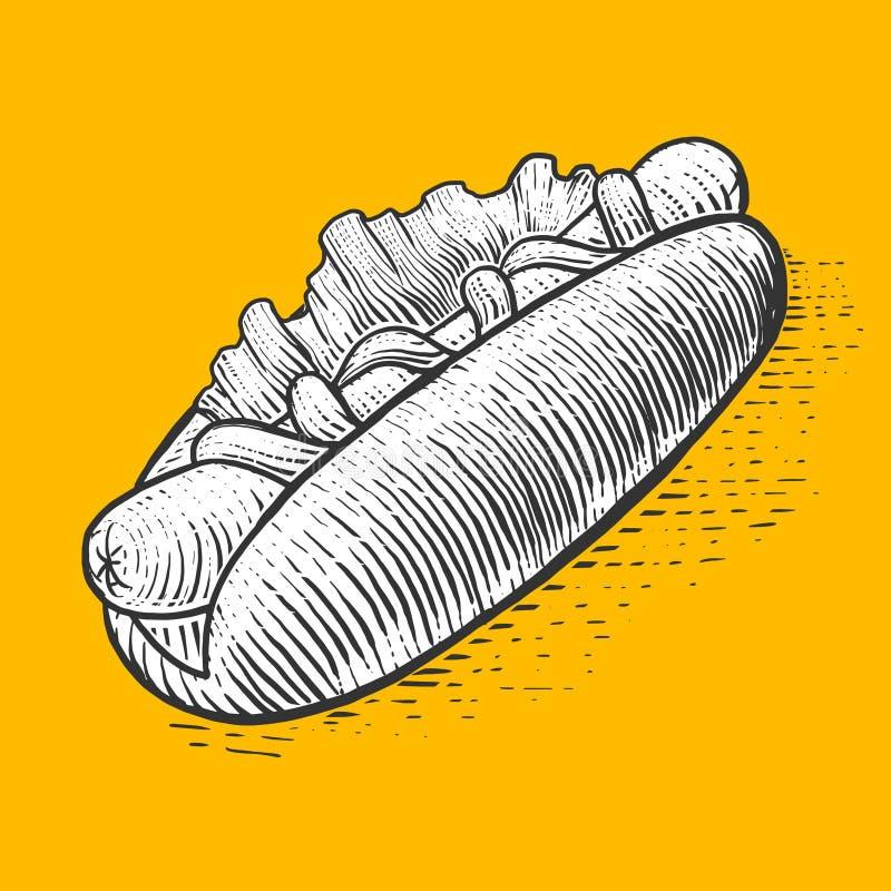 Vettore di stile dell'incisione degli alimenti a rapida preparazione del hot dog illustrazione di stock