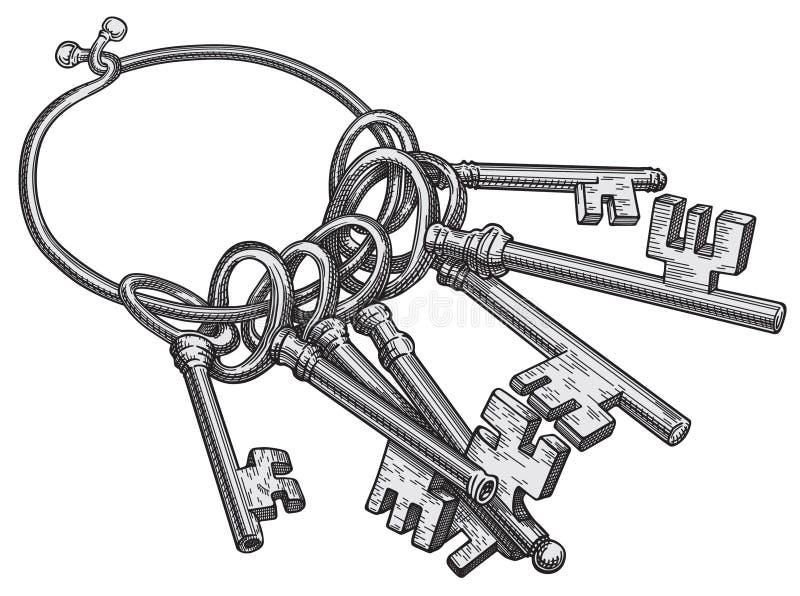 Vettore di tasti illustrazione vettoriale