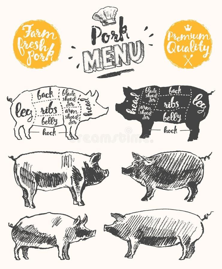 Vettore disegnato dei tagli di maiale di schema del modello del menu della carne illustrazione vettoriale