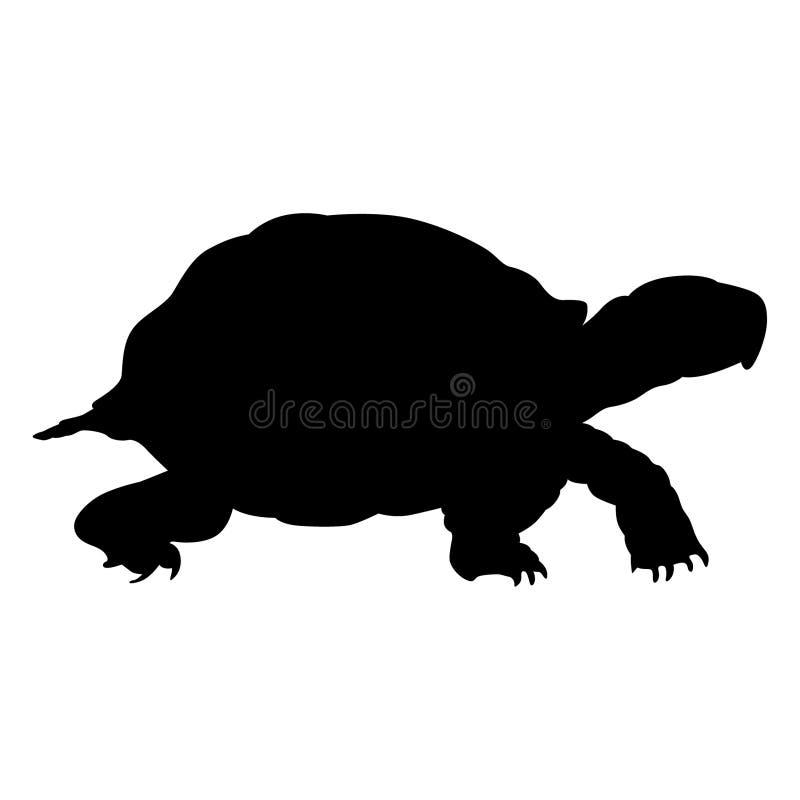 Vettore ENV disegnato a mano, vettore, ENV, logo, icona, illustrazione della tartaruga della siluetta dai crafteroks per gli usi  illustrazione di stock