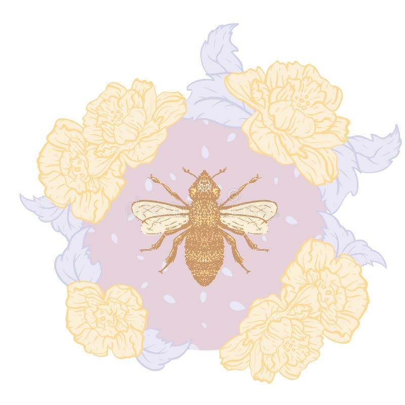Vettore Honey Bee con le rose nella stampa pastello dell'illustrazione illustrazione di stock