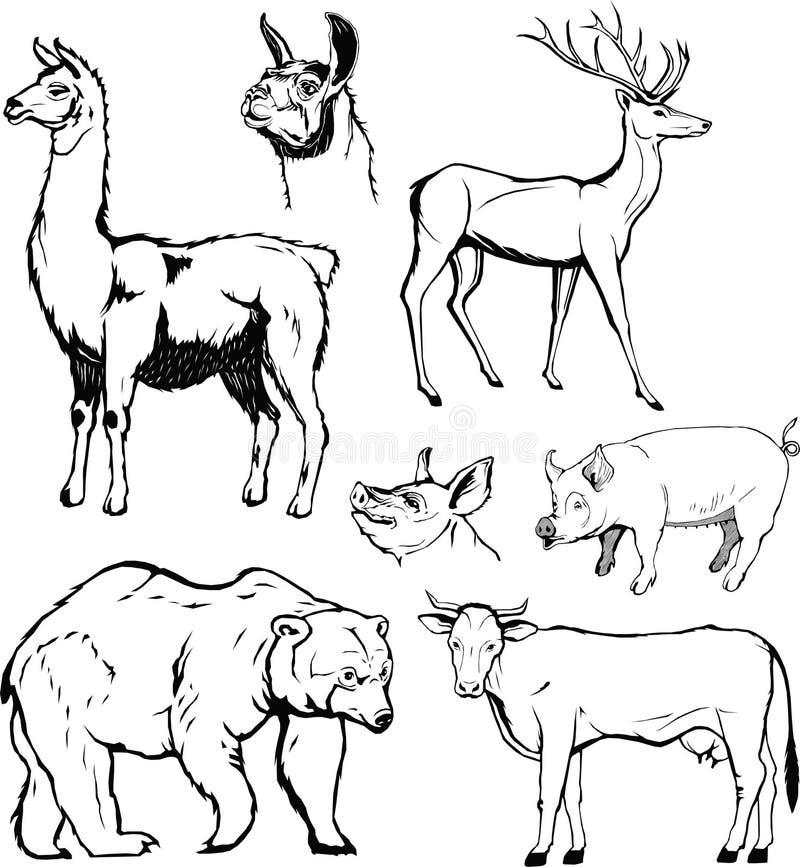 Vettore, insieme animale, grafico, monogramma, il nero, mano che disegna, orso, mucca, cervo, carne di maiale, lama royalty illustrazione gratis