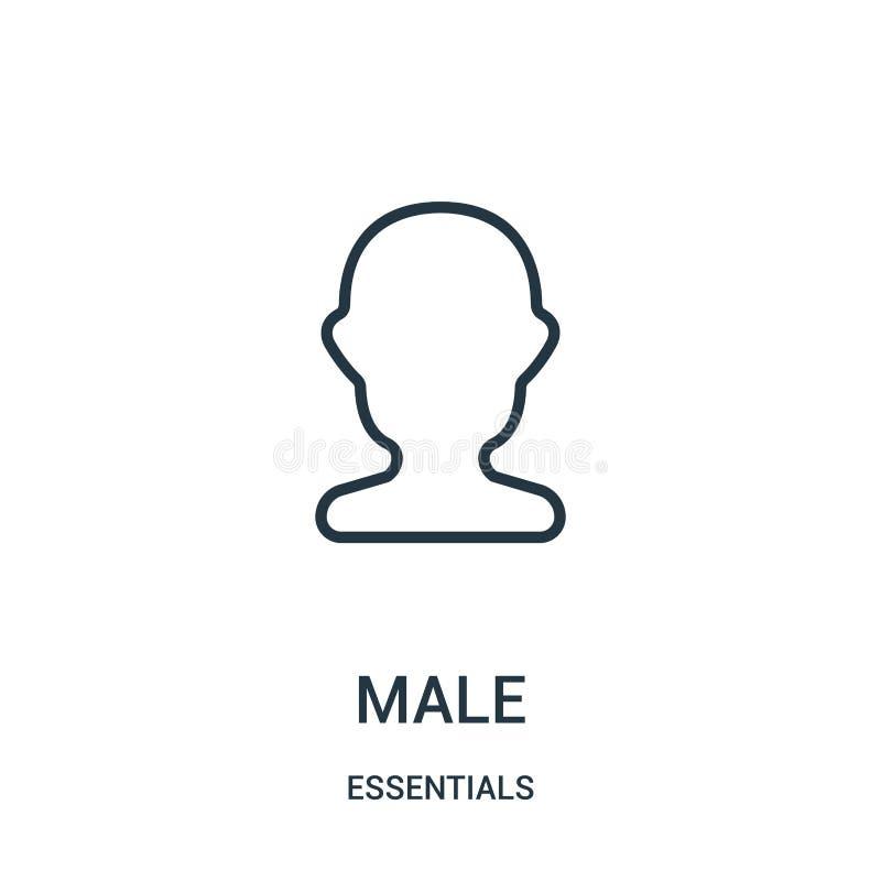 vettore maschio dell'icona dalla raccolta degli elementi essenziali Linea sottile illustrazione maschio di vettore dell'icona del royalty illustrazione gratis