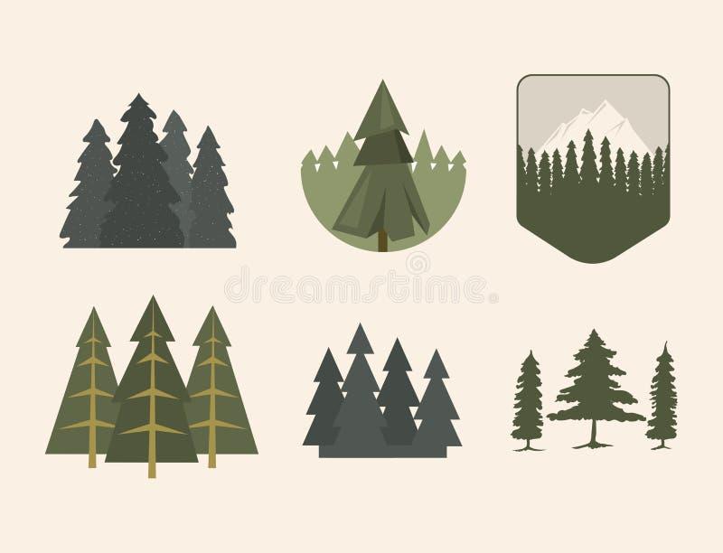 Vettore naturale conifero del disegno del gambo della foglia della pianta del cedro del ramo dell'abete rosso del pino delle cime illustrazione vettoriale